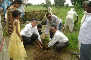 Tree Plantation, Gadchiroli, 2014